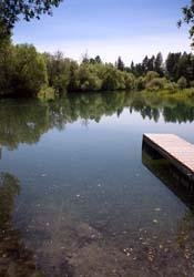 Whitefish River Whitefish River Summer Rivers