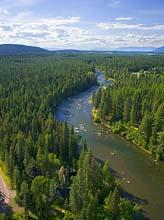 Swan River Summer Aerial