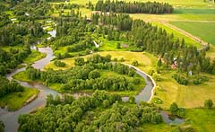 Winding River Whitefish River Summer Aerial