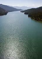 Swan Lake Summer Aerial