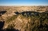 Pine on Rock Vista camp area Makoshika State Park Summer Aerial