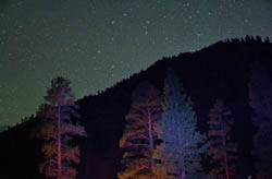 Late night Painting the trees with light Middle Fork Salmon River Spring Night