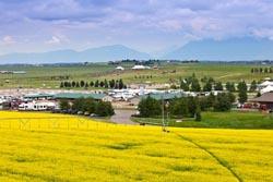 Canola Field in front of Rebecca Farm Kalispell, MT Summer Aerial