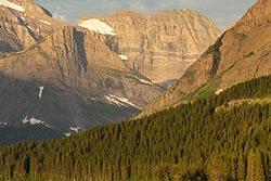Close up Glacier Park Summer Landscape
