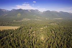Jewel Basin Ranch, Bigfork Property For Sale BigFork, MT Summer Aerial