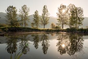 Sunset on Whitefish Lake