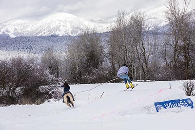 Whitefish Ski Joring