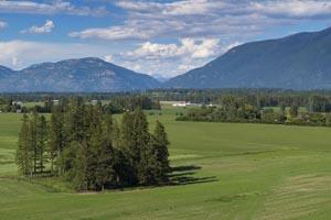 Birch Grove Farm land