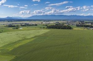 Aerial view of Birch Grove Farm