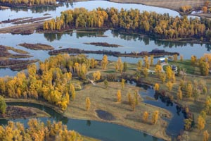 Patterns over Flathead River