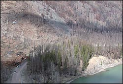 Heli Logging (heli image) Glacier Park Spring Aerial