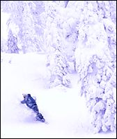 Whitewater, BC Winter Snowboard