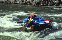 China Joe on the Salmon Salmon River Spring Rafting