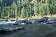 Salmon River Fall Landscape