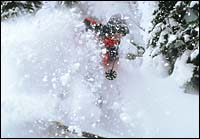 Big Mountain Winter Telemark