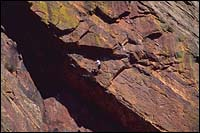 Colorado Spring Climbing