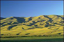 Dillon, MT Spring Landscape