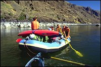 Salmon River Summer Rafting