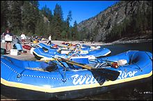 Salmon River Fall Rafting